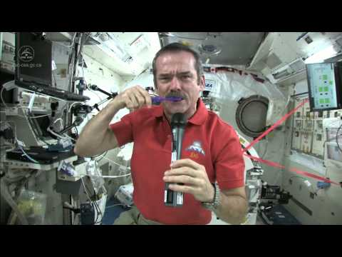 Chris Hadfield becomes the First Canadian Commander of the